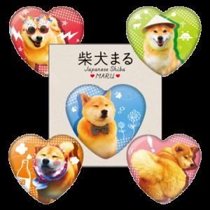 柴犬まる×キャラデパ!限定ハート型缶バッジ
